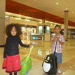 Little jet settlers at Muscat Airport