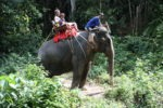 Amani and I on an Elephant tour