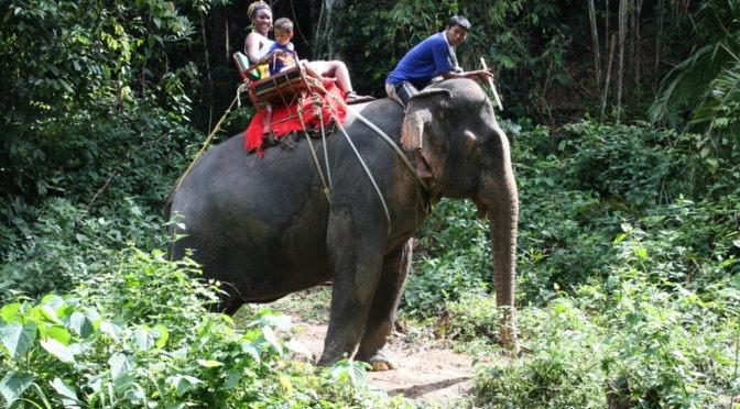 Family Holiday Krabi, Thailand. 2009