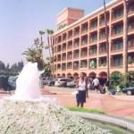 Holiday Inn ndio hotel tuliyofikia Disneyland