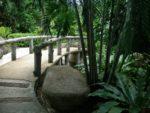 Beautiful hotel garden