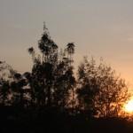 Sunrise Mwanza