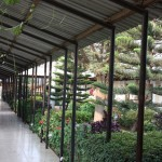 Veta Hotel Dodoma