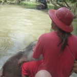 The man alitusaidia kutuongozea Elephant wetu kwenye mto