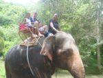 Safari inaendelea