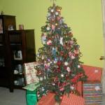 Santa alitupendelea sana