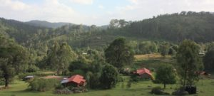 Dar 2012 (Swiss Farm Cottage Lushoto, Tanzania Part 1)
