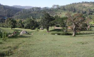 Dar 2012 (Swiss Farm Cottage Lushoto, Tanzania Part 2)