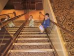 In the cruise ship