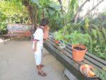 Amani @butterfly farm
