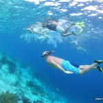 Snorkelling at Bonaire