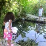 Malaika & Amani @butterfly farm