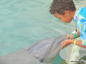 Dolphin Cove Jamaica (Kiss from a Dolphin @ Dolphin Cove In Jamaica, Dec 10. 2012)