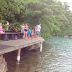 @Dolphin Cove