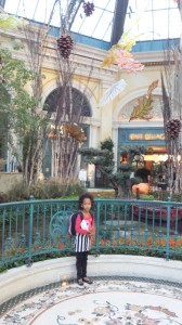 At Bellagio hotel