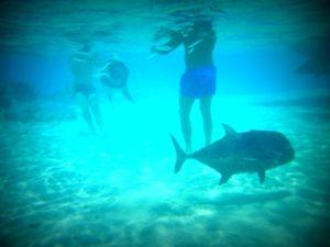 P1050607 (One foot Island, Aitutaki-Our around the world trip Nov-Dec 2013-Part I)